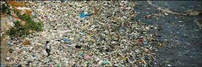 2-Pasifik'teki Çöp Adası