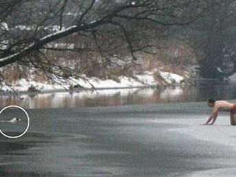 Jarvis donmuş nehir den çıkamayan köpeğini kurtarmak için