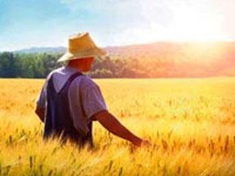 İş Bankası'ndan tarıma büyük destek